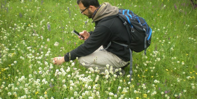 Tanti itinerari alla scoperta della natura con BioBlitz Lombardia 2019
