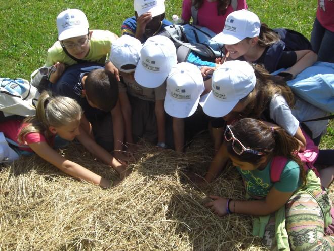 Centri estivi per bambini al Parco Monte Barro